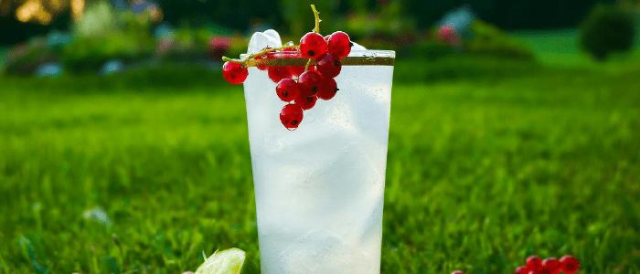 gin fizz trago