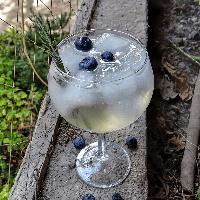 gin fizz de romero